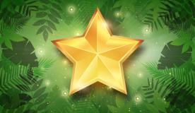 Dschungelcamp 2020: Das verdienen die Stars wirklich